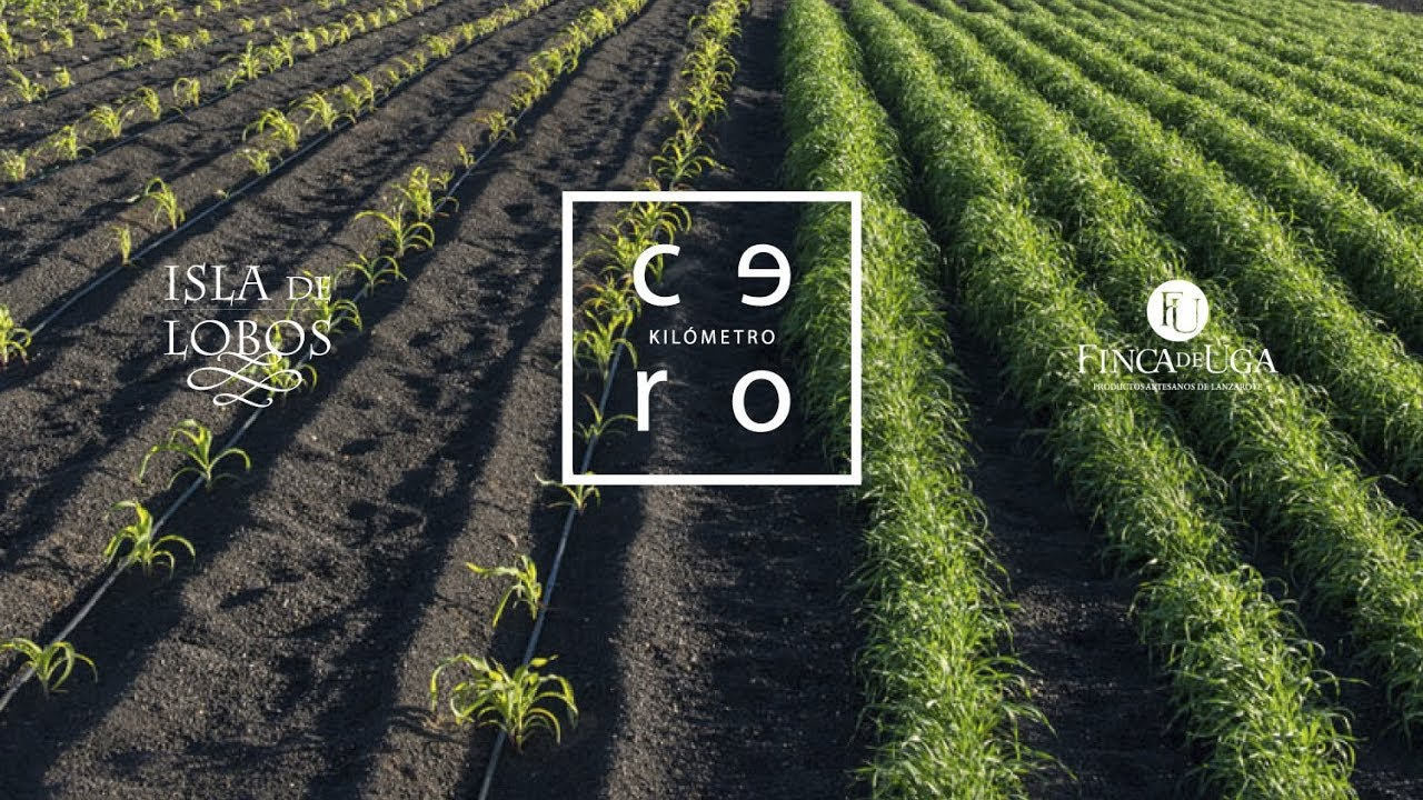 Logos for Isla de Lobos, Kilometro Cero and Finca de Uga over image of field with green plants.